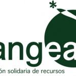 Pangea busca fisioterapeutas