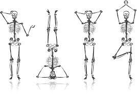 Qué nos proporcionan los huesos