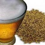cerveza_levadura_descubierta