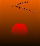 migratory-birds-157638__180