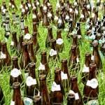 beer-bottles-949796__180