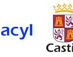 listado admitidos y excluidos fisioterapeutas SACyL