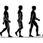 Términos ciclo de la marcha