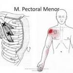 Palpación pectoral menor