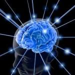direcciones asociaciones daño cerebral
