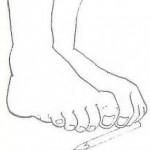 Ejercicios fisioterapia musculatura intrínseca del pie