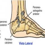 ligamento lateral externo tobillo