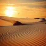 desert-790640__180